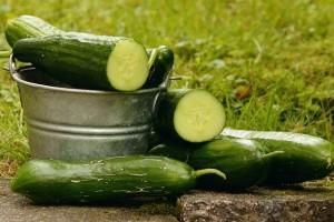Qinlight共享夏日多吃这几种蔬菜轻盈又美肌