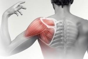 导致膀子疼的常见七种疾病是什么有什么特色医师具体告诉您
